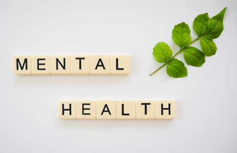 Consultants to Provide Churches with Mental Health Training and Resources